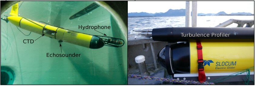 Photographs of the two different gliders used in this study of baleen whale habitats in Roseway Bay, NS. Both are physically similar, but have different pieces of equipment attached to them.