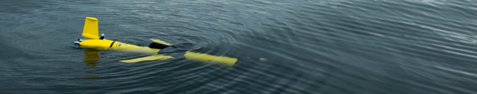 Photograph of the UBC Glider in the water, used for the study of baleen whale habitats of Roseway Basin, NS. Glider is a long yellow tube, with wings and a tail fin. It is shown floating just beneath the surface of the water.