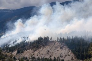 Photo shows smoke billowing from a line of trees, BC wildfires Canada's top ten weather stories 2017 by David Phillips