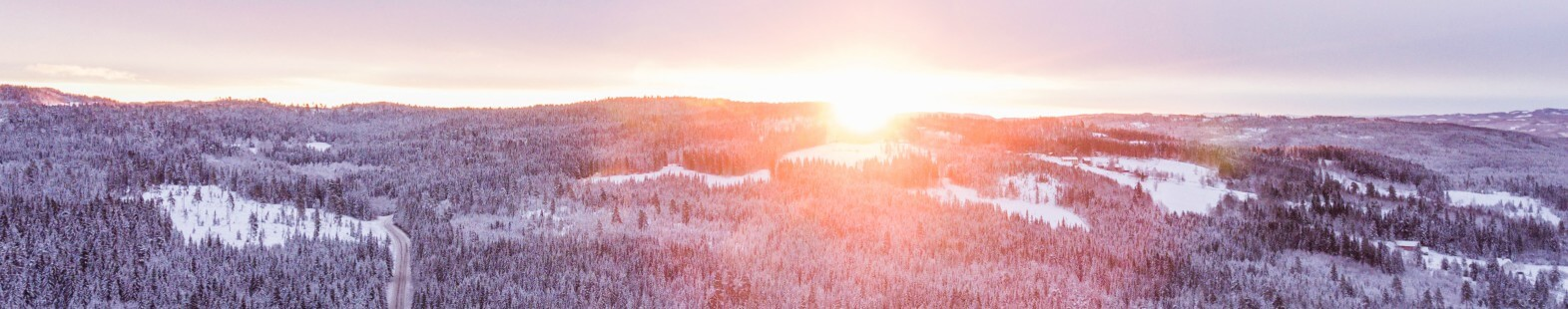 Image shows a snowy tree filled landscape with the setting sun on the horizon
