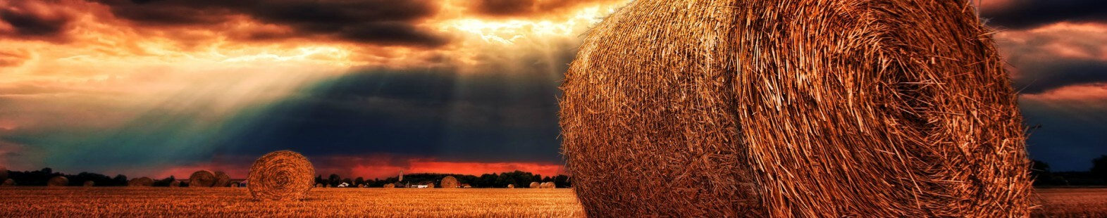 Photo shows a field with bails of hay and setting sun in the distance