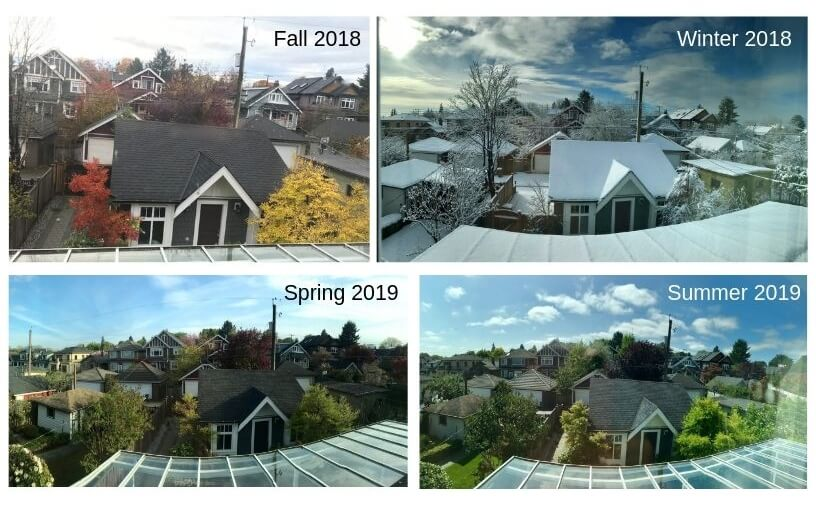 Four photos, all showing the same view from Haowen Qin's window, of houses, roofs and trees in the different seasons