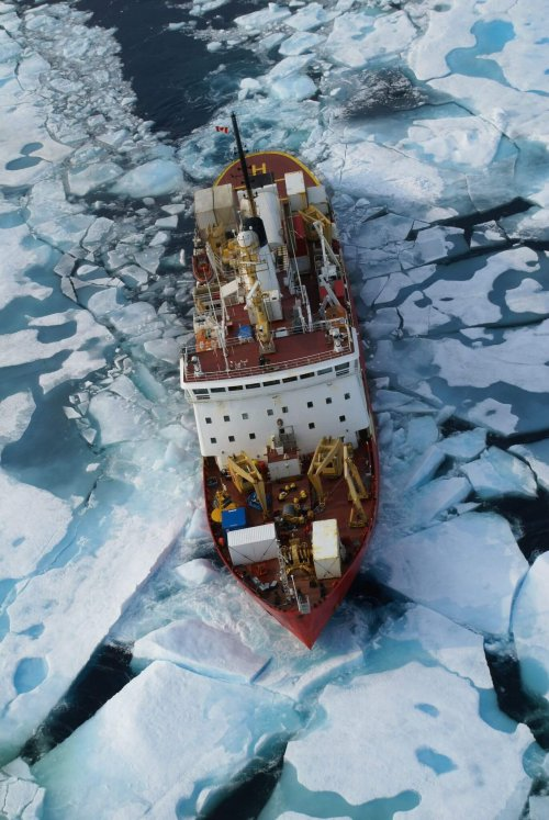 Areal photo of the icebreaker in the ocean with broken ice all around